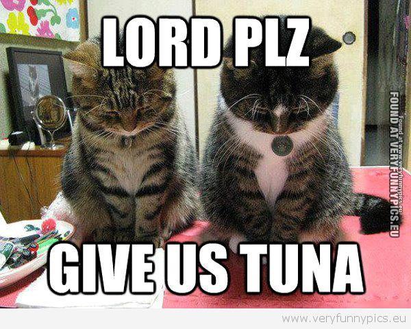 Give us tuna