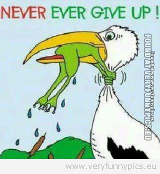 Funny Picture - Never give up