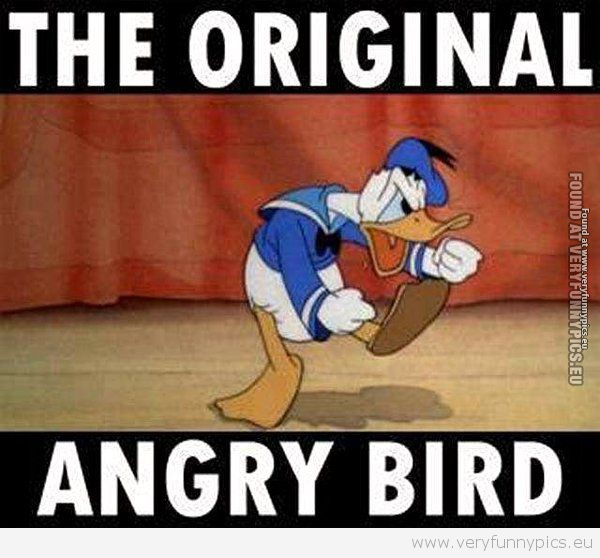 Funny Picture - Original angry bird