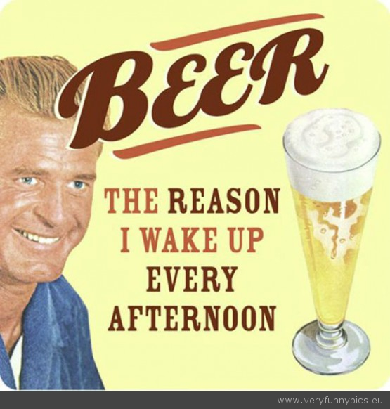 Gotta love the beer very funny pics funny picture beer the reason why i wake up every afternoon publicscrutiny Image collections