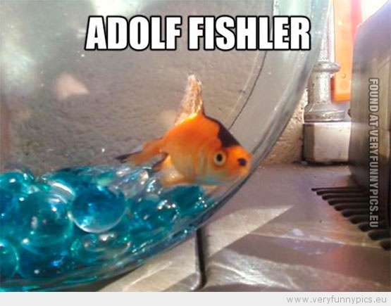 Meet Adolf Fishler