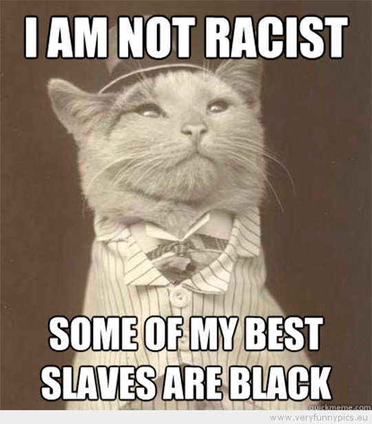 Funny Picture - Aristocat-I am not racist som of my best slaves are black