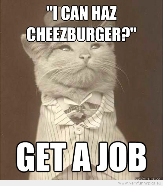 Funny Picture - Aristocat-i can haz cheezeburger get a job