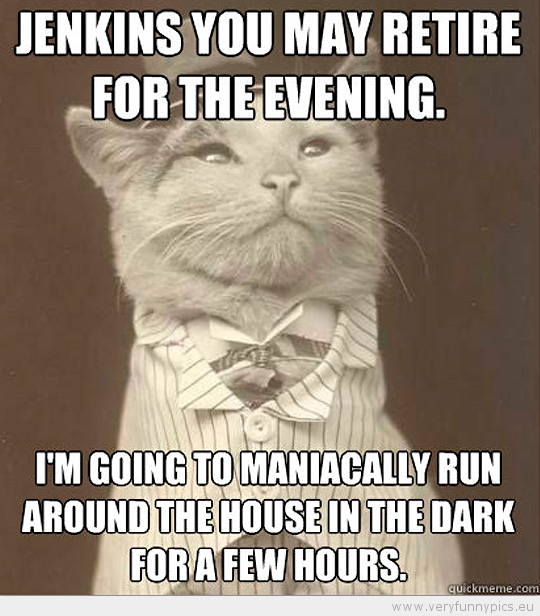 Funny Picture - Aristocat-Jenkins you may retire for the evening im going to maniacally run around the house in the dark for a few hours