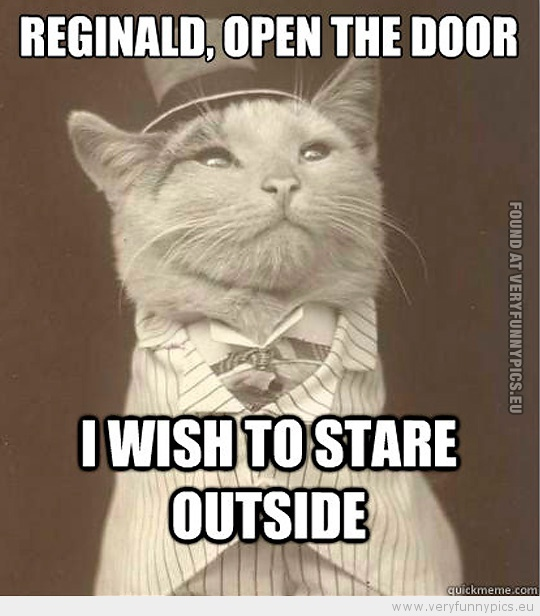 Funny Picture - Aristocat-Reginald, open the door i wish to stare outside