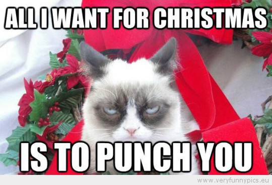 Funny Picture - Grumpy cat all i want for christmas is to punch you