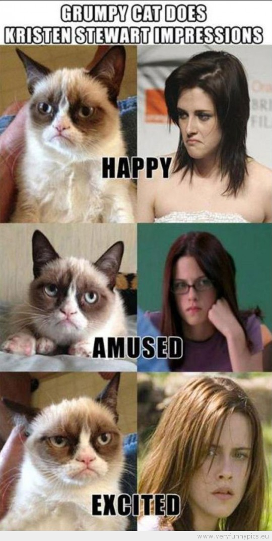 Funny Picture - Grumpy cat does kristen stewart impressions
