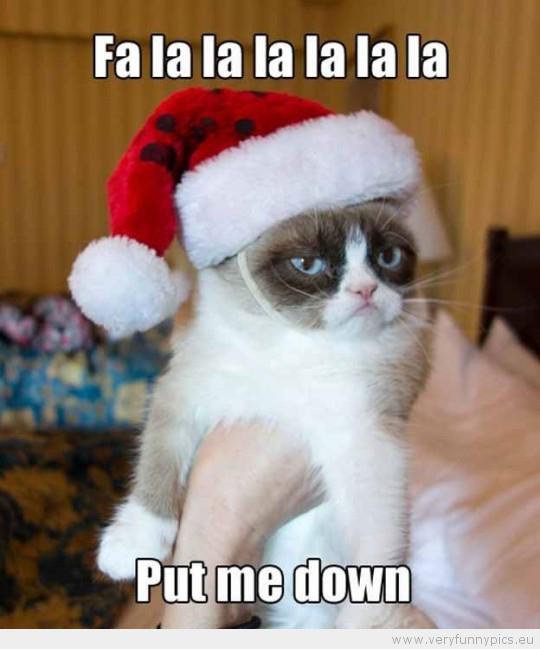 Funny Picture - Grumpy cat fa la la la la put me down