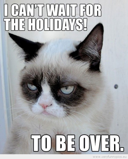Funny Picture - Grumpy cat i cant wait for the holidays to be over