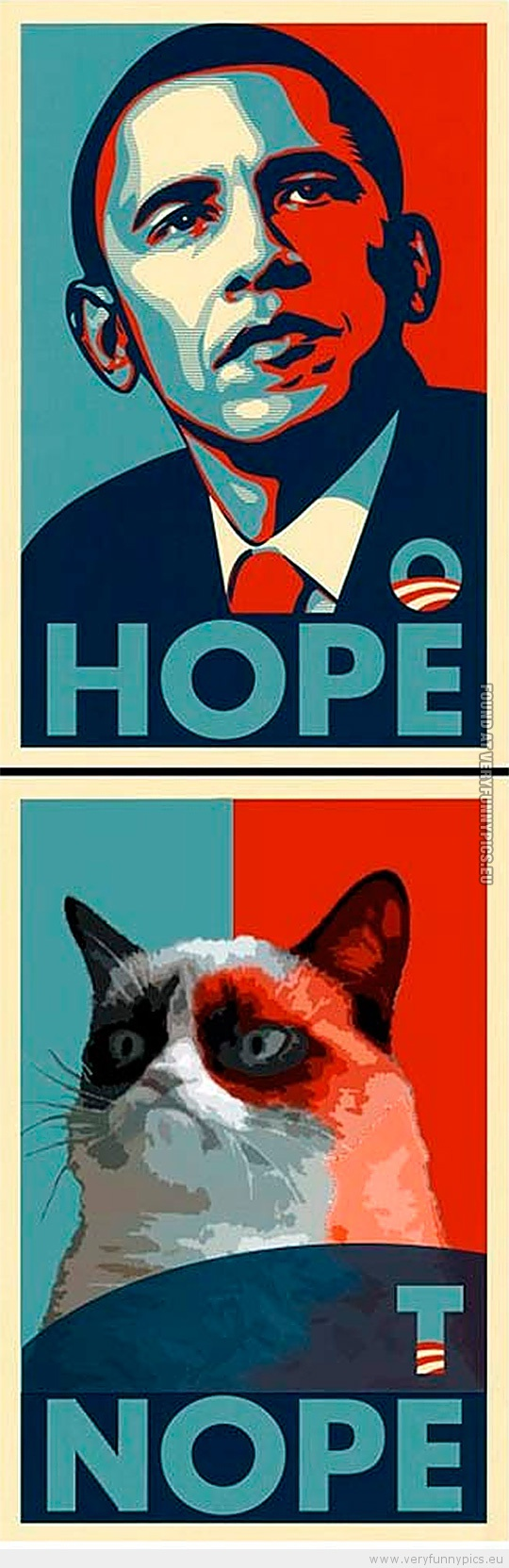 Funny Picture - Grumpy cat obama hope nope