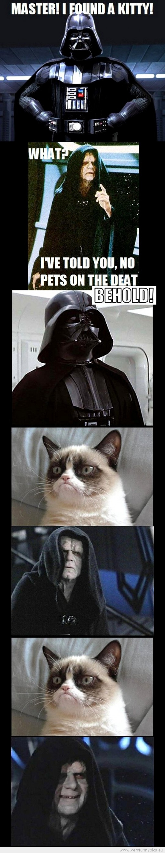 Funny Picture - Grumpy cat star wars