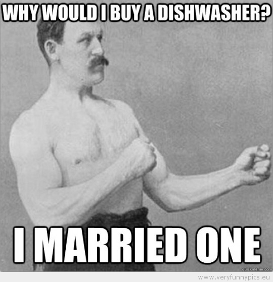 Funny Picture - Overly manly man why would i buy a dishwasher i married one