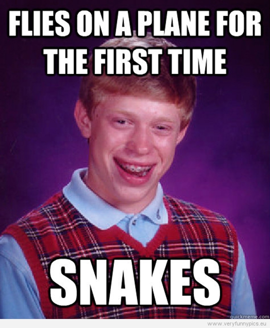 Funny Picture - Bad luck Brian - Flies on a plan for the first time - Snakes