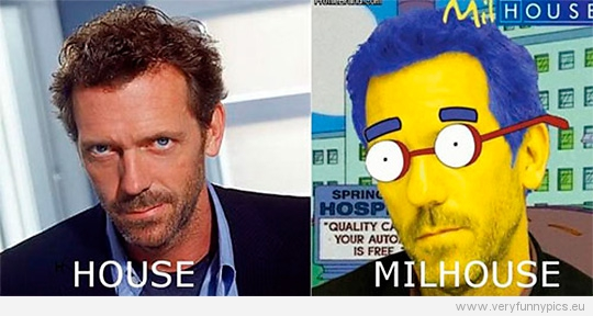 Funny Picture - Dr House VS Dr Milhouse