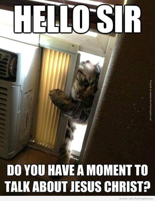 funny picture hello sir do you have a moment to talk about jesus christ cat 540x7001 cat from jehovah's witnesses very funny pics