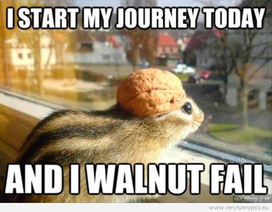 funny picture i start my journey today and i walnut fail 540x421 i believe in this young chipmunk very funny pics