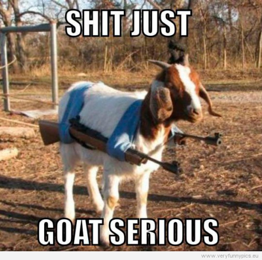 Funny Picture - Shit just goat serious