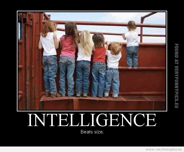 A true saying about intelligence | Very Funny Pics