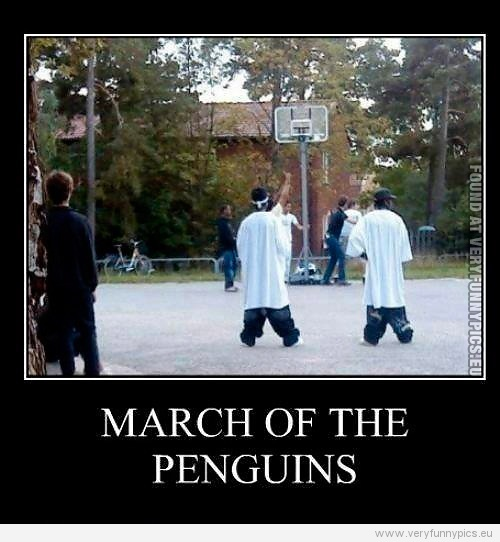 Funny Picture - March of the penguins - Saggy pants