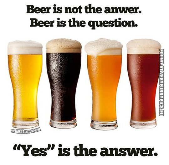 Beer is the question very funny pics funny picture beer is not the answer beer is the question yes is publicscrutiny Image collections