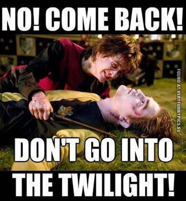 Funny Picture - No! Come back! Don't go into the twilight! Harry Potter quote