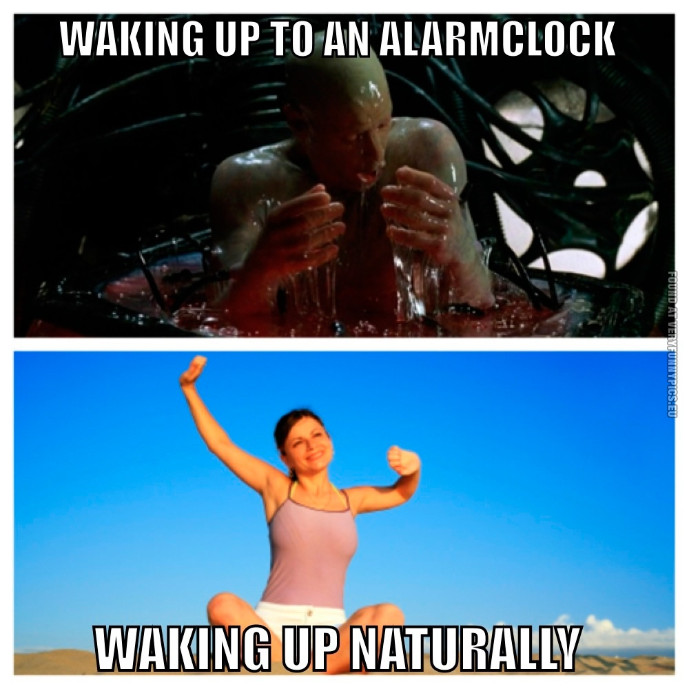 Funny Pictures Waking Up To An Alarmclock Vs Waking Up Naturally