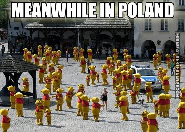 funny picture meanwhile in poland