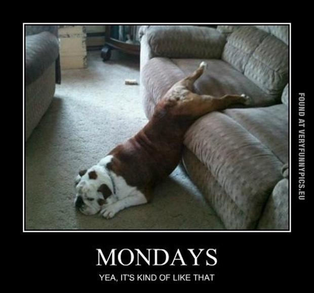 Mondays explained in one picture