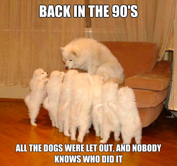 funny-pics-who-let-the-dogs-out-back-in-the-90s