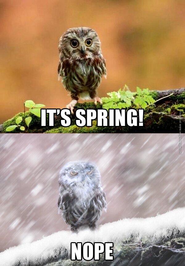 Spring Is Around The Corner Very Funny Pics