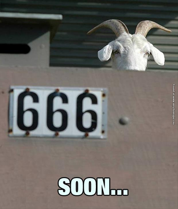 Scary goat