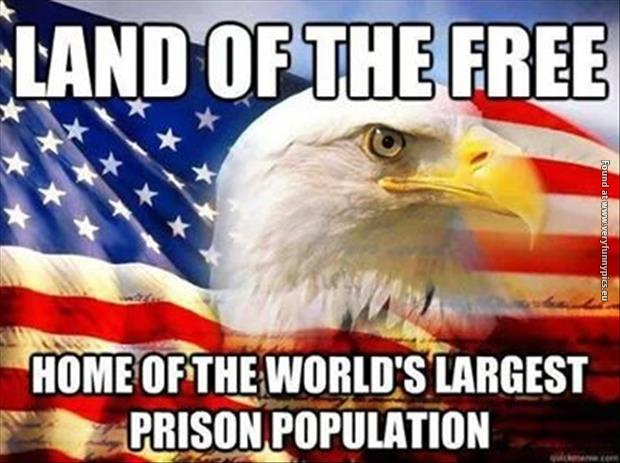 funny pictures land of the free