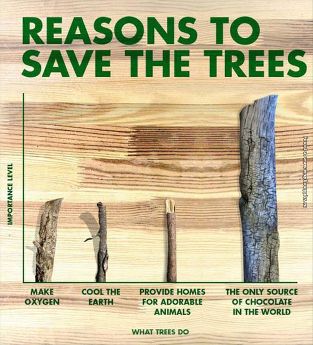 A chart on why we should save the trees