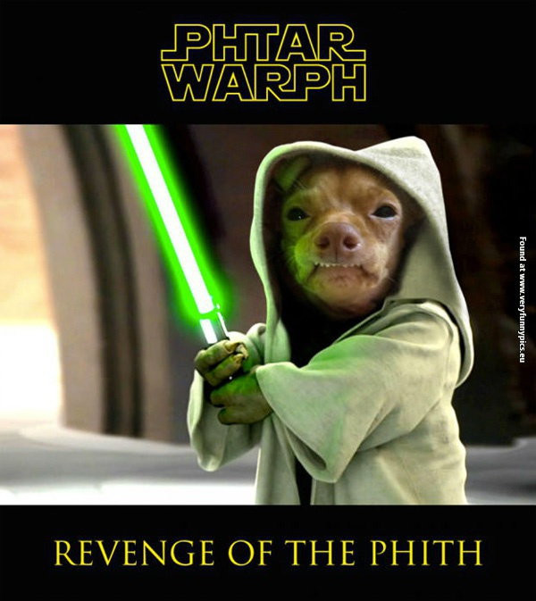 May The 4th Be With You Dog: Phteven Is A Jedi