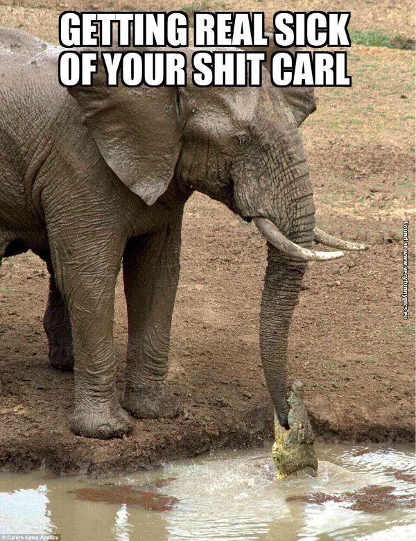 Carl and his little pranks…