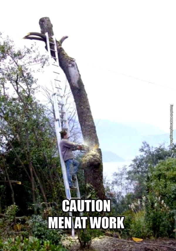 Lumberjack Archives | Very Funny Pics
