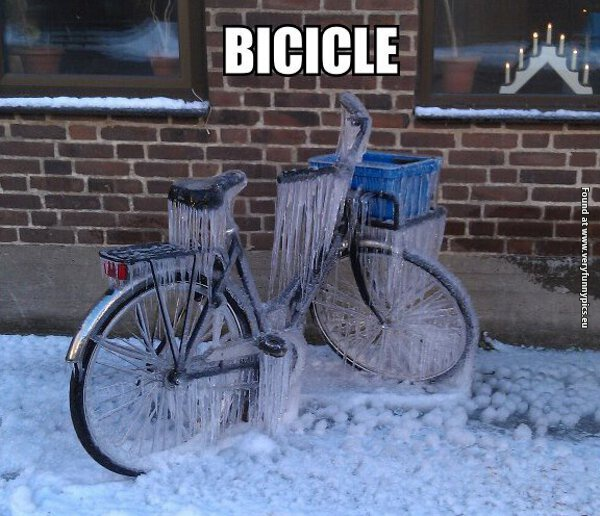 funny pictures bicicle clever pun