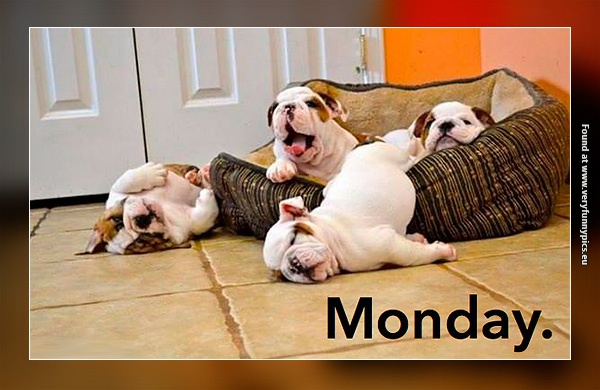 Monday is the worst day of the week