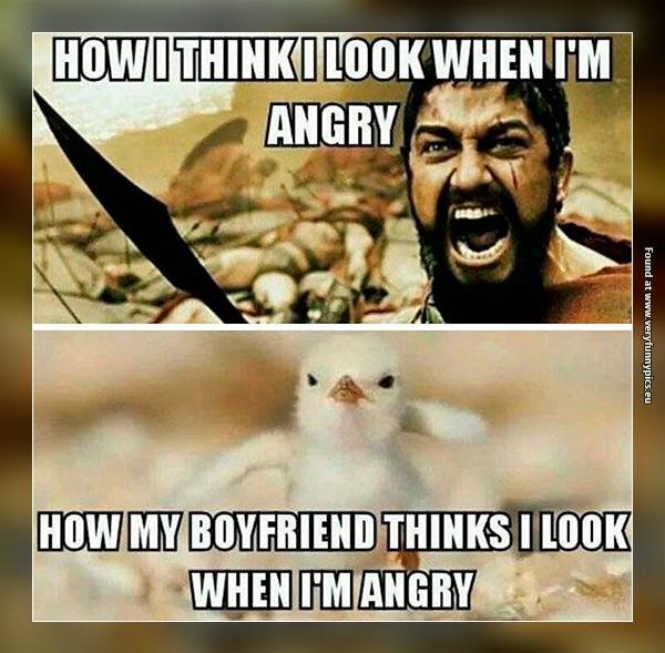 The perception of my fury may vary