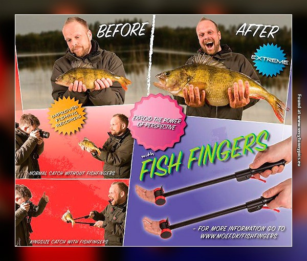 How to become a professional fisherman