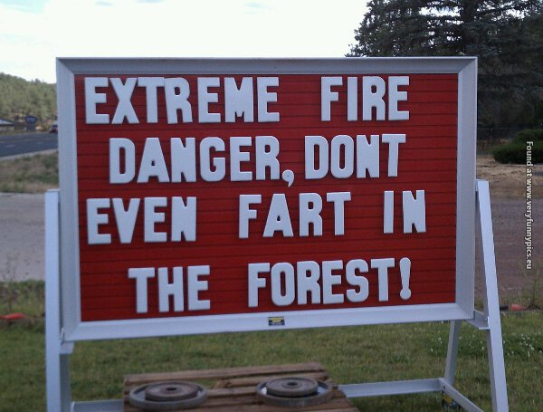 Don't even fart in the forest