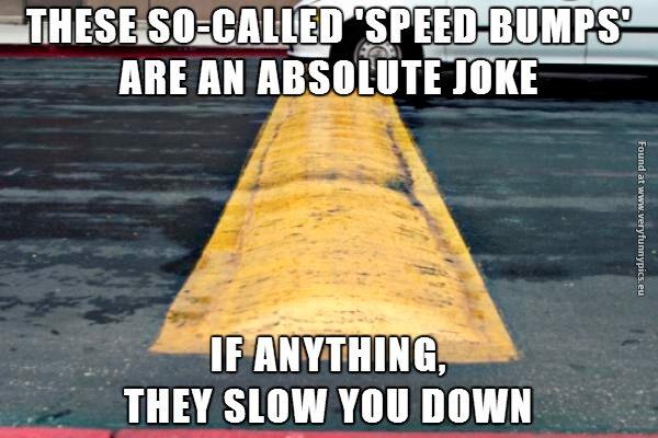 I Call Bullshit On Speed Bumps Very Funny Pics