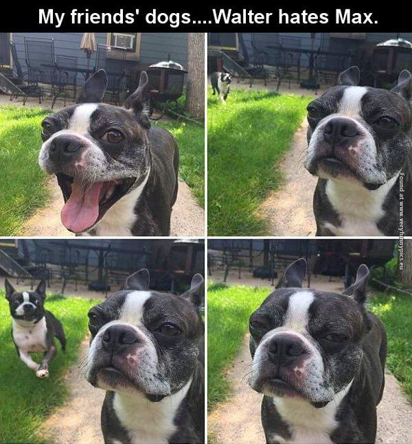 We all got that annoying friend…