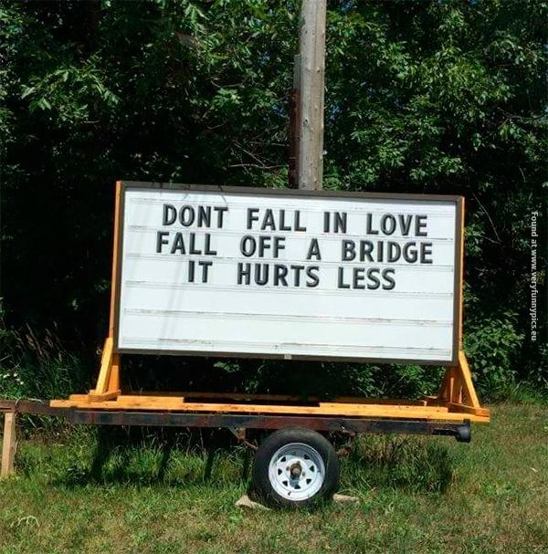 Words of wisdom on wheels