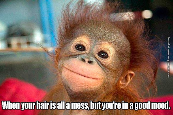 Never let your hair determine your mood