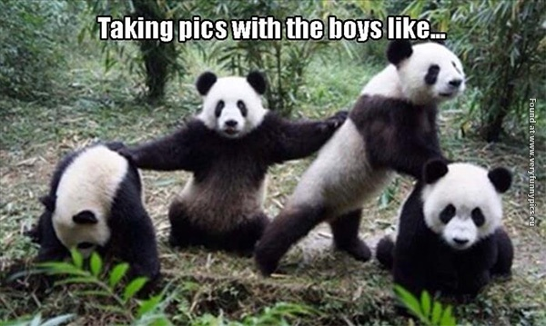 How all gangs behave in front of a camera