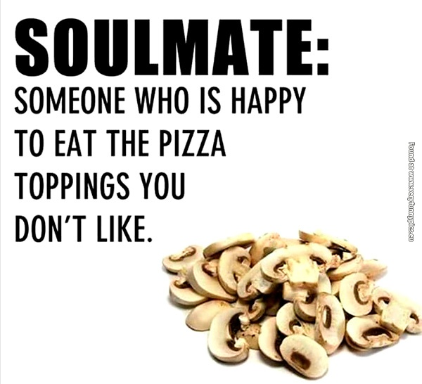 funny-pictures-soulmate-the-definition