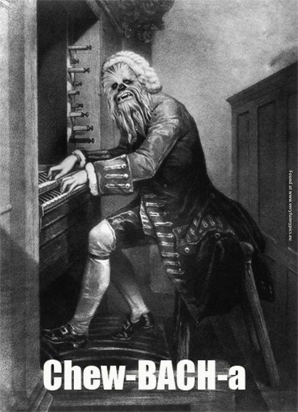 funny-pictures-chew-bach-a