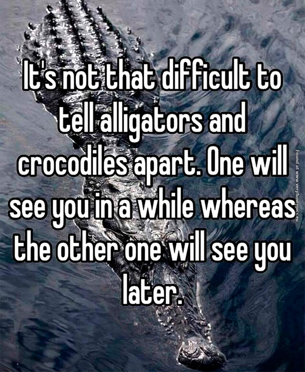Know the difference between an alligator and a crocodile