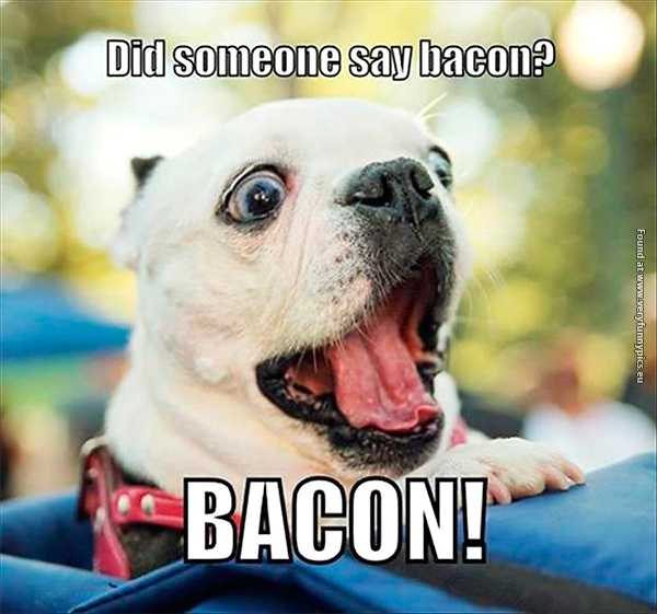 How men usually reacts to bacon